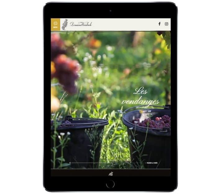 site internet domaine vin responsive design